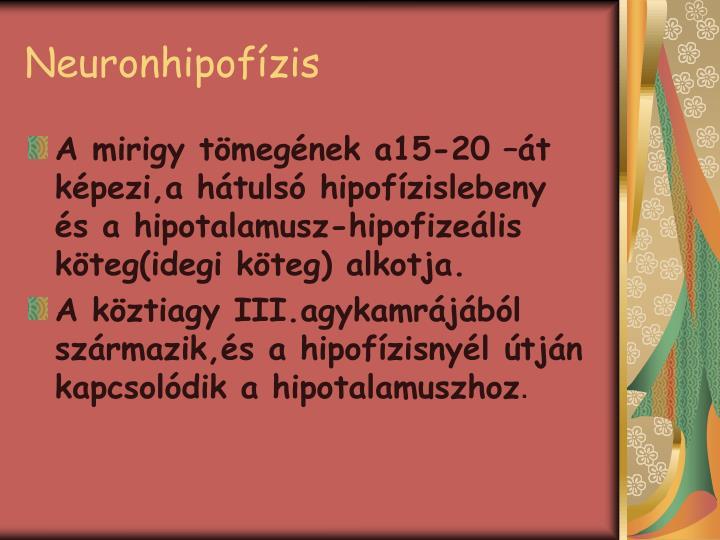 Neuronhipofízis