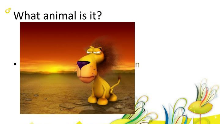 What animal is it?