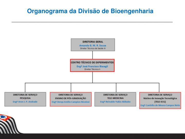 Organograma da Divisão de Bioengenharia