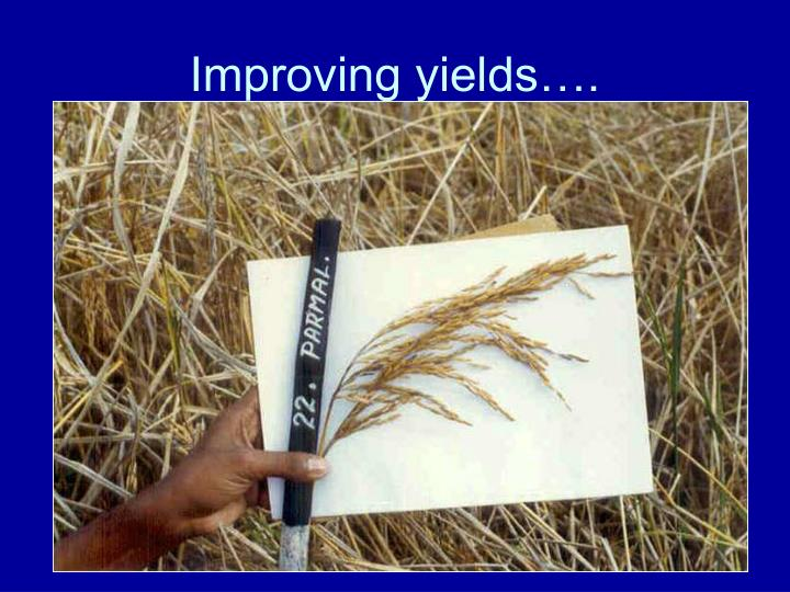 Improving yields….