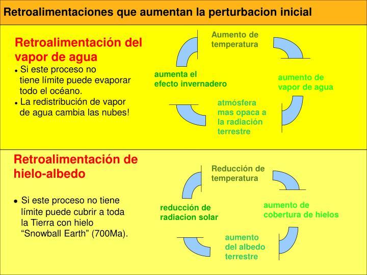 Retroalimentaciones que aumentan la perturbacion inicial