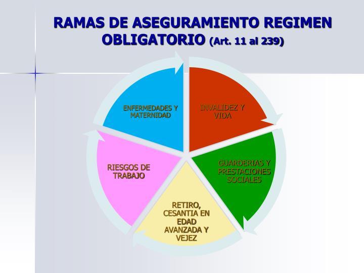 RAMAS DE ASEGURAMIENTO REGIMEN OBLIGATORIO