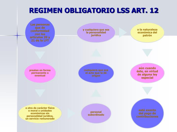REGIMEN OBLIGATORIO LSS ART. 12