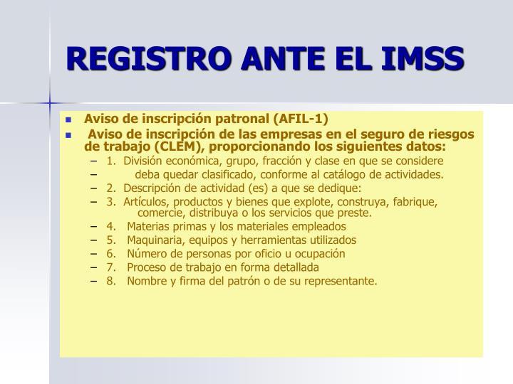 REGISTRO ANTE EL IMSS
