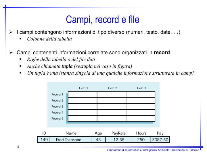 I campi contengono informazioni di tipo diverso (numeri, testo, date, …)