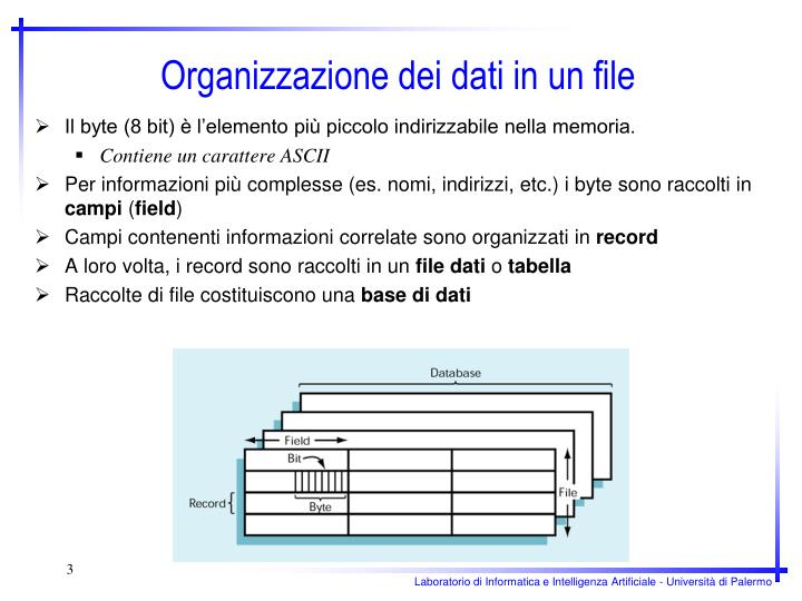 Il byte (8 bit) è l'elemento più piccolo indirizzabile nella memoria.