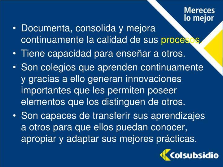 Documenta, consolida y mejora continuamente la calidad de sus