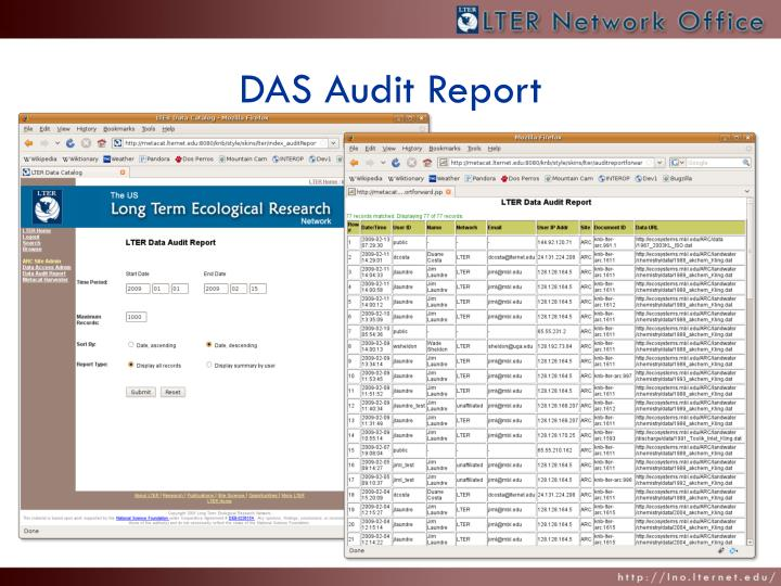 DAS Audit Report