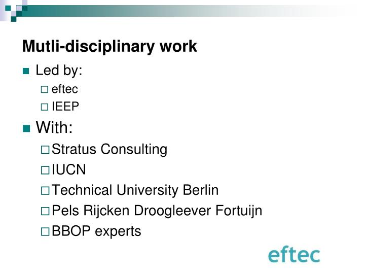 Mutli-disciplinary work