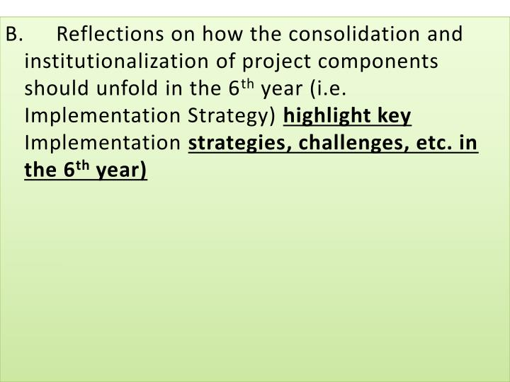 B.Reflections on how the consolidation and institutionalization of project components should unfold in the 6