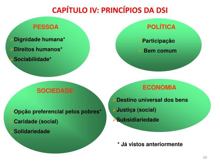 CAPÍTULO IV: PRINCÍPIOS DA DSI