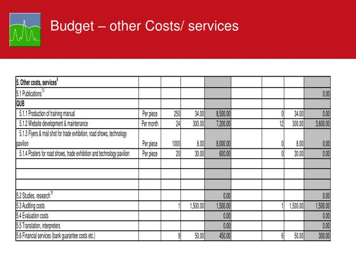 Budget – other Costs/ services
