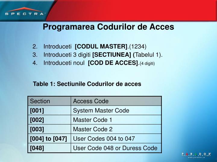 Programarea Codurilor de Acces