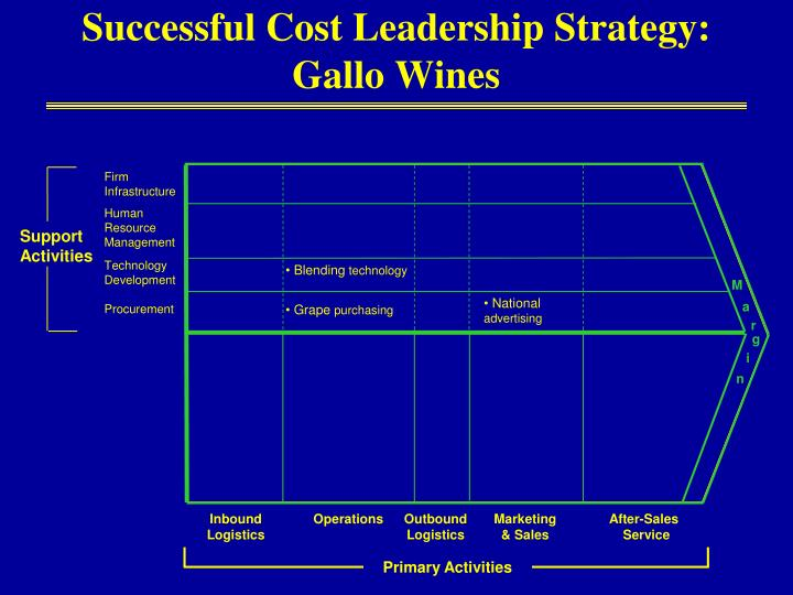 Successful Cost Leadership Strategy: