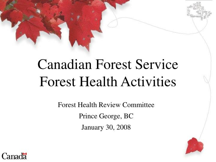 Forest health review committee prince george bc january 30 2008