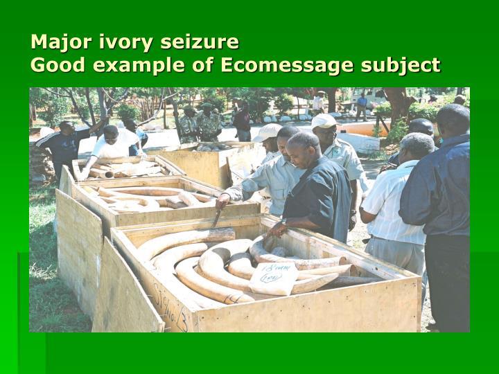 Major ivory seizure