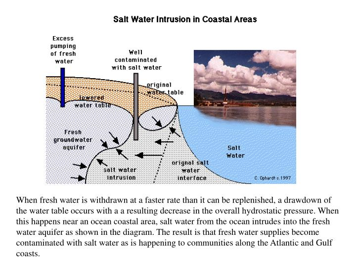 When fresh water is withdrawn at a faster rate than it can be replenished, a drawdown of the water table occurs with a a resulting decrease in the overall hydrostatic pressure. When this happens near an ocean coastal area, salt water from the ocean intrudes into the fresh water aquifer as shown in the diagram. The result is that fresh water supplies become contaminated with salt water as is happening to communities along the Atlantic and Gulf coasts.