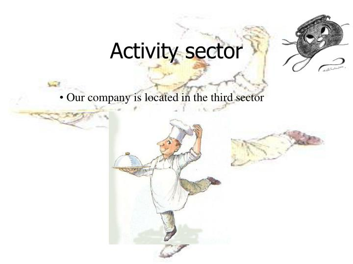 Activity sector