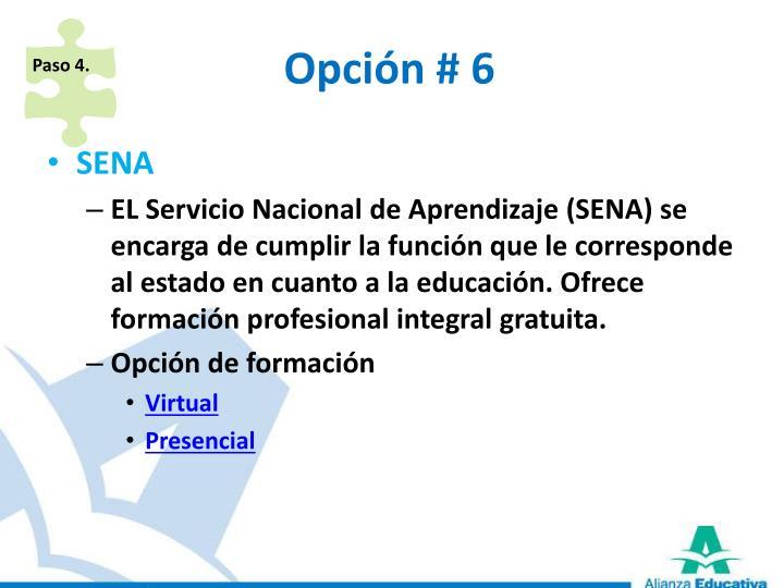 Opción # 6