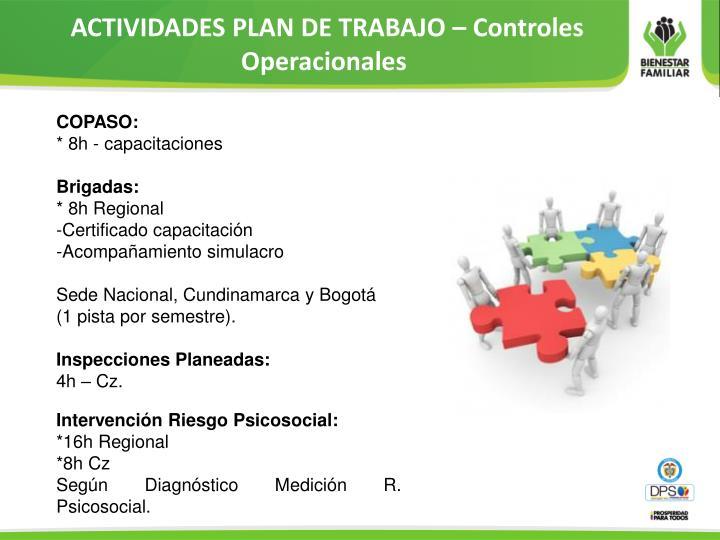 ACTIVIDADES PLAN DE TRABAJO – Controles Operacionales