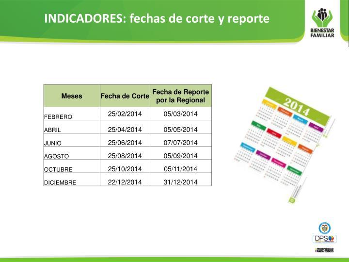 INDICADORES: fechas de corte y reporte