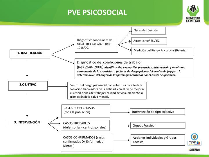 PVE PSICOSOCIAL