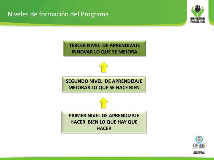 Niveles de formación del Programa