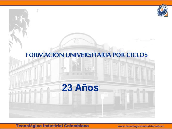 FORMACION UNIVERSITARIA POR CICLOS