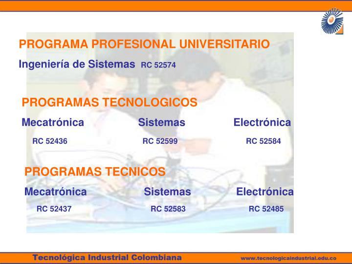 PROGRAMA PROFESIONAL UNIVERSITARIO