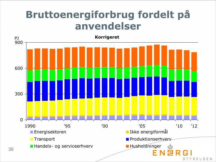 Bruttoenergiforbrug fordelt på anvendelser