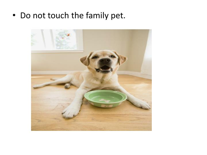 Do not touch the family pet.