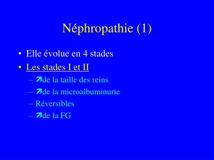 Néphropathie (1)