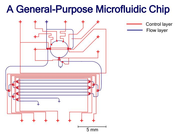 A General-Purpose Microfluidic Chip