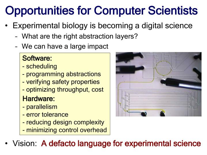 Opportunities for Computer Scientists
