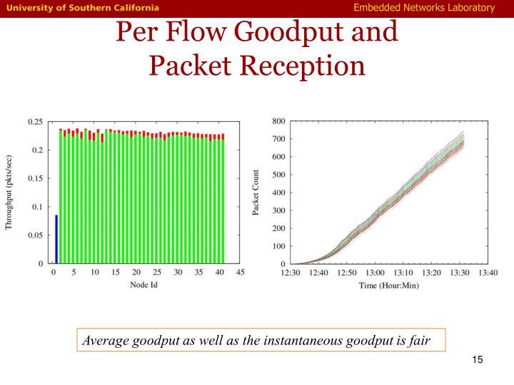 Per Flow Goodput and