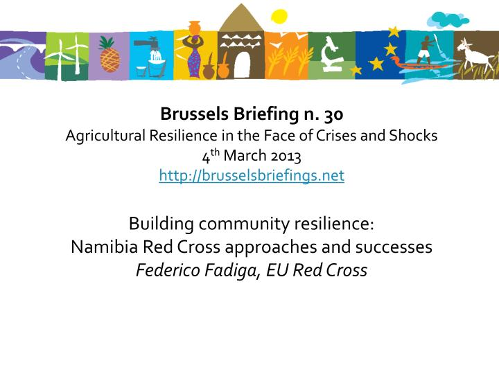 Brussels Briefing n. 30