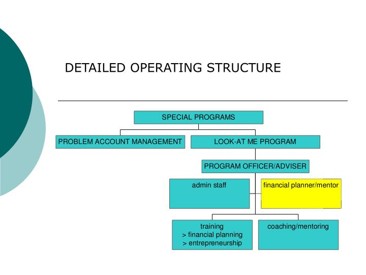 DETAILED OPERATING STRUCTURE