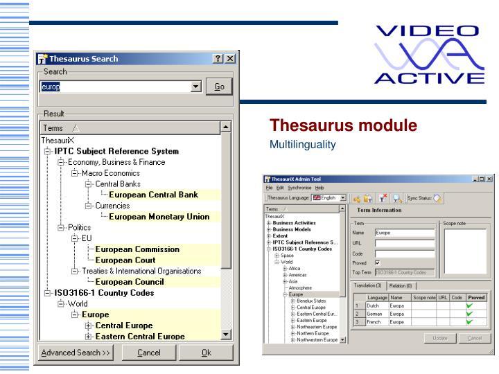 Thesaurus module