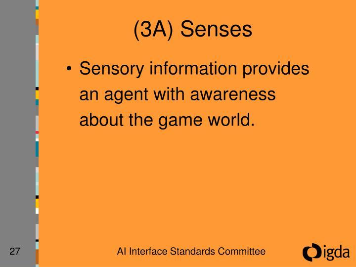 (3A) Senses