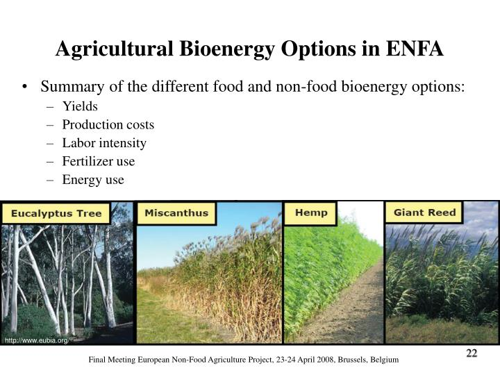 Summary of the different food and non-food bioenergy options:
