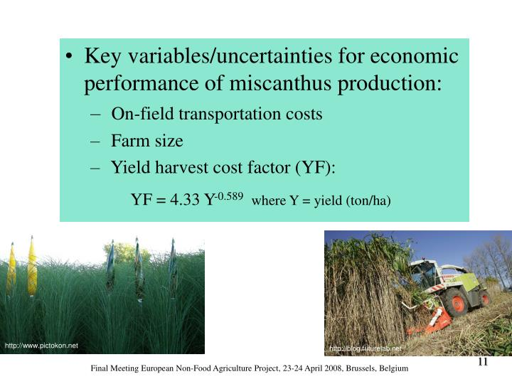 Key variables/uncertainties for economic performance of miscanthus production: