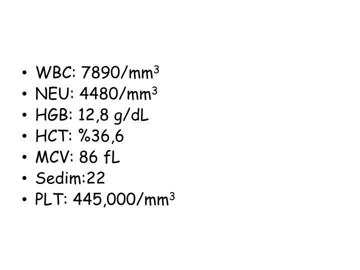WBC: 7890/mm