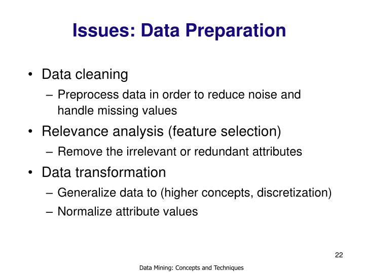 Issues: Data Preparation