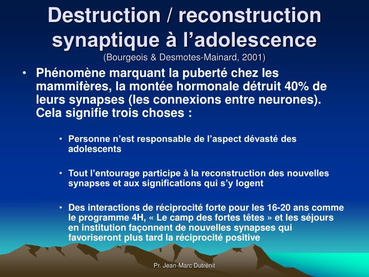 Destruction / reconstruction  synaptique à l'adolescence