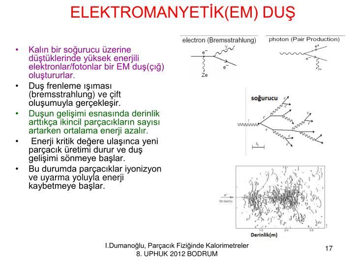 ELEKTROMANYETİK(EM) DUŞ