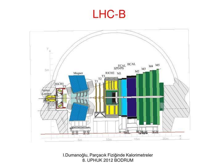 LHC-B