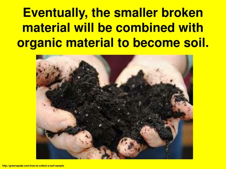 Eventually, the smaller broken material will be combined with organic material to become soil.