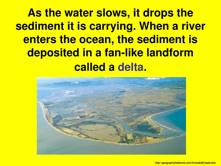 As the water slows, it drops the sediment it is carrying. When a river enters the ocean, the sediment is deposited in a fan-like landform called a