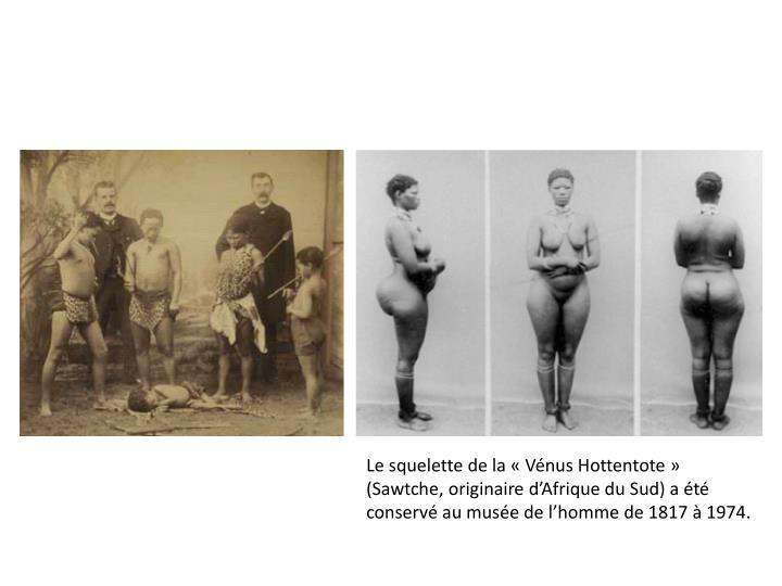 Le squelette de la «Vénus Hottentote» (