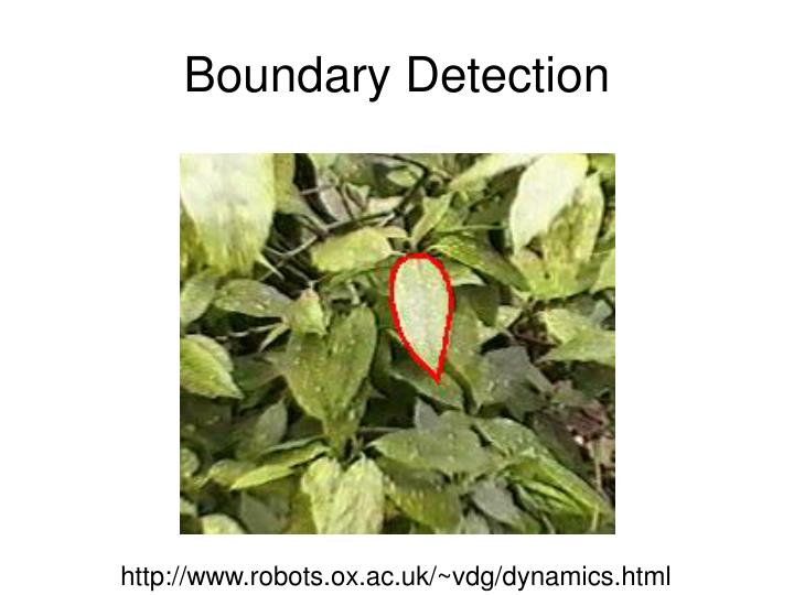 Boundary Detection